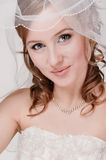 Portrait of the young bride. In studio royalty free stock photography