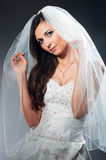 Portrait of the young bride in studio Stock Image