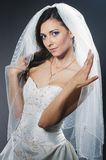 Portrait of the young bride in studio Royalty Free Stock Image