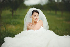 Portrait of young brunette bride Stock Photos