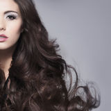 Portrait of a young brunette woman in makeup Royalty Free Stock Image