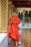 Portrait of a young Buddhist monk Royalty Free Stock Photos