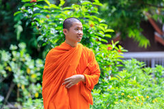 Portrait of Young Buddhist Monk Stock Image