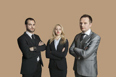 Portrait of young business people with arms crossed over colored background Royalty Free Stock Images