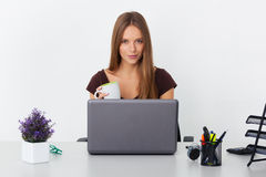 Portrait of young business woman working at her office. Stock Images