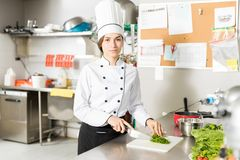 Confident Cook Chopping Vegetable In Kitchen. Portrait of young chef chopping spring onion on board in kitchen at restaurant stock image