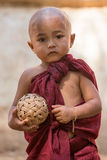 Portrait young child monk in Myanmar, Burma Royalty Free Stock Photography