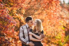 Portrait of a young couple in autumn Park Royalty Free Stock Image