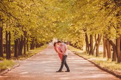 Portrait of young couple in park Stock Images