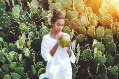 Afro girl drinking coco water from coconut. Portrait of young exquisite African American female drinking fresh coco water in front of wall of cactuses; cute Royalty Free Stock Images