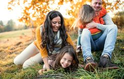 A portrait of young family with two small children in autumn nature at sunset. royalty free stock photos