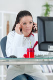 Portrait young female doctor on phone at office Stock Image