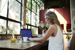 Portrait of a young female freelancer using laptop computer for distance job while sitting in modern coffee shop interior, Stock Photography