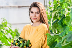 Portrait of young female greenhouse worker Stock Photography