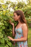 Portrait of a young female teenage girl standing among the leaves of a tree and sniffing a bunch of grapes stock photo