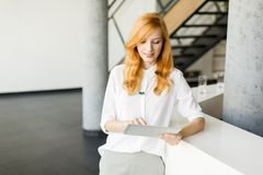 Young businesswoman wirth tablet in the office. Portrait of young ginger businesswoman wirth tablet in the office Stock Photography