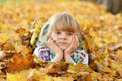 Portrait of a young girl in the autumn season royalty free stock image