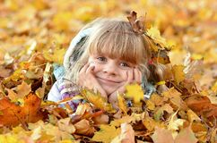 Portrait of a young girl in the autumn season royalty free stock photo