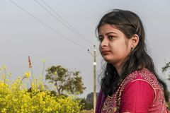 Portrait of a young girl belonging to the West Bengali of India sitting in a mustard seed field, wearing the traditional dress royalty free stock images