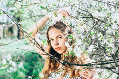Portrait of young girl in cherry garden. Portrait of young girl in blossom cherry garden, touching a branches, looking to the camera stock photo