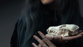 Portrait of a young girl holding a mysterious skull in the hands of a fox. Painted long hair. Portrait of a mysterious young girl holding a skull in the hands stock video