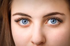 Face of young woman with long eyelashes Stock Images