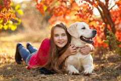 Portrait of Young girl sitting on the ground with her dog retriever in autumn scene. A beautiful woman and her dogs (Labrador retriever) posing in autumn park stock images