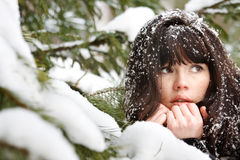 Portrait of a young girl with the snow in her hair Stock Photo