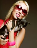 Portrait of young glamorous woman with toy-terrier Royalty Free Stock Images