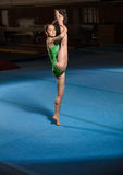 Portrait of young gymnasts competing in the stadium Royalty Free Stock Photos