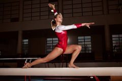 Portrait of young gymnasts Royalty Free Stock Image