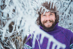 Portrait of a young handsome man with a beard. A person close up of a bearded man. Bearded man froze in the winter woods Stock Image