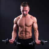 Portrait of young handsome muscular man with dumbbells over grey Stock Photography