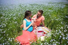 Young happy beautiful pregnant couple in linen field Royalty Free Stock Photos
