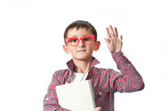 Portrait of a young happy boy in red spectacles . Portrait of a young happy boy in red spectacles with books Royalty Free Stock Photo