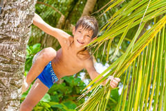Portrait of young happy child boy in tropical background Royalty Free Stock Photo