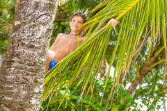 Portrait of young happy child boy in tropical background Royalty Free Stock Photography