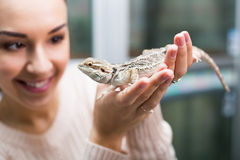 Portrait of young happy woman holding a lizard Royalty Free Stock Photos