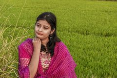 Portrait of a young Indian girl sitting in a paddy field, wearing the traditional dress stock images