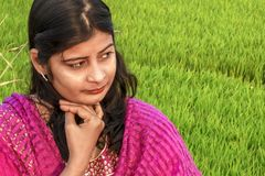 Portrait of a young Indian girl sitting in a paddy field, wearing the traditional dress stock photo