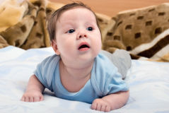 Portrait of young infants Stock Photography