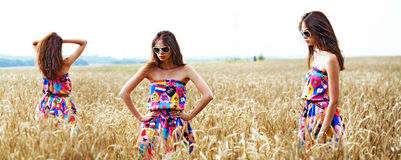 Portrait of young lady in a wheat field Royalty Free Stock Photo