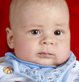 Portrait of young little baby boy. Close-up portrait of young little baby boy stock photo