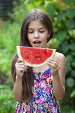 Portrait of a young little girl with watermelon Stock Images