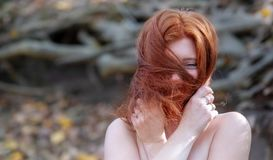 Portrait of a young lovely fox-haired girl with free shoulders, beautiful attractive fiery woman, ginger, redhead. Red fox, red-haired, the red hair across her royalty free stock images