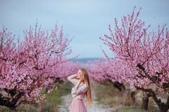 Portrait of young lovely woman in spring flowers royalty free stock photography