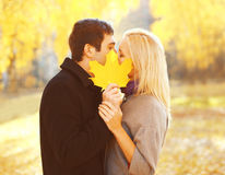 Portrait young loving couple kissing closing yellow maple leaf in warm sunny autumn Royalty Free Stock Image