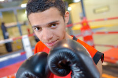 Portrait young male boxer Royalty Free Stock Images