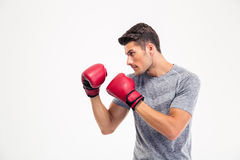 Portrait of a young male boxer Royalty Free Stock Photo
