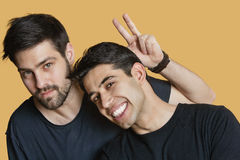 Portrait of young male friends with peace sign over colored background Royalty Free Stock Images